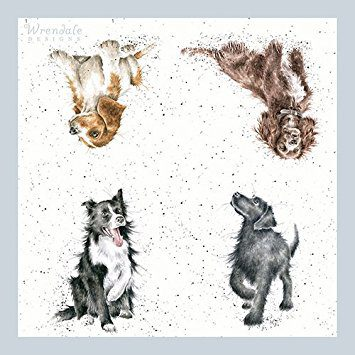 wrendale-designs-walkies-dog-doggy-paper-napkins-3-ply