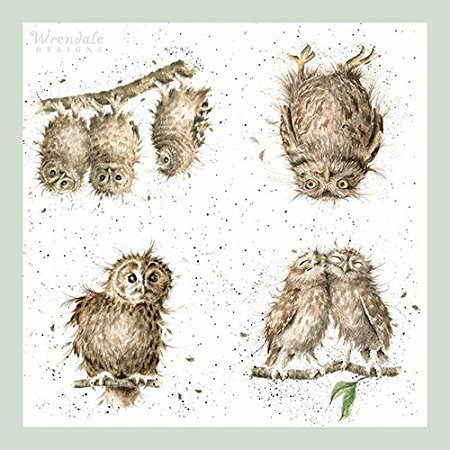 wrendale-designs-what-a-hoot-owl-paper-napkin-unfolded