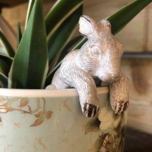 inside-parlane-bunny-rabbit-animal-pot-hanging