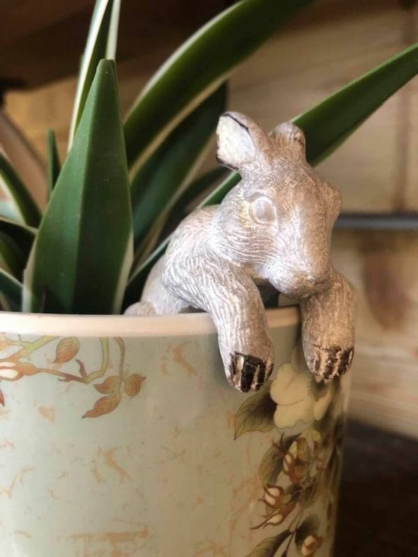 inside-parlane-bunny-rabbit-animal-pot-hanging