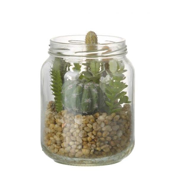 780672-parlane-succulent-mix-in-jam-jar