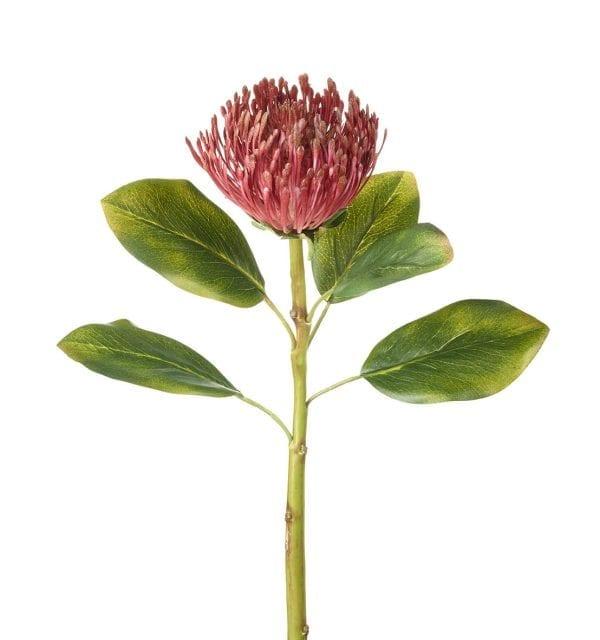 810444-protea-deep-pink-protea-faux-flower-stem