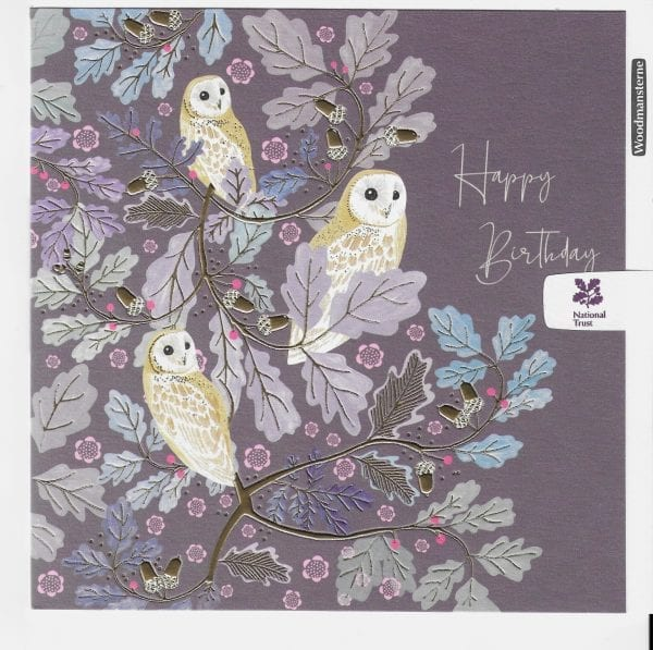 national-trust-elegant-owls