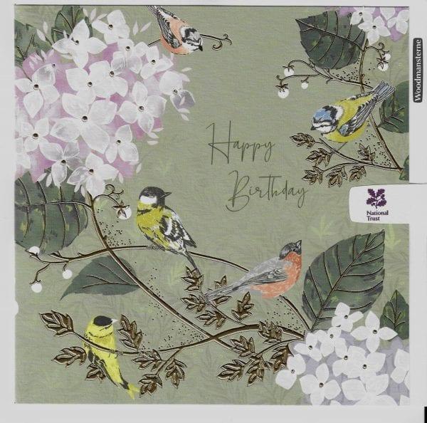 national-trust-garden-birds