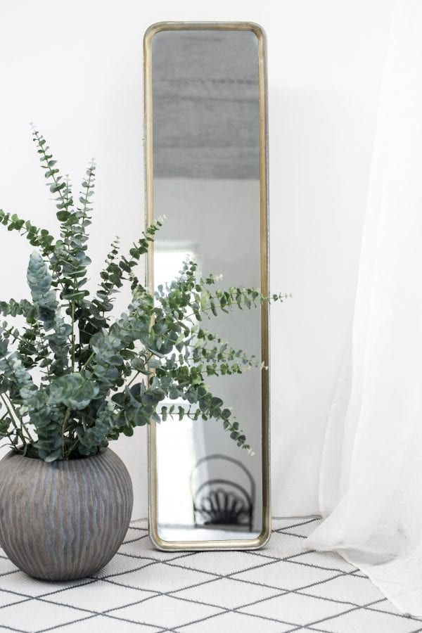 flora-faux-eucalyptus-stems-in-vase