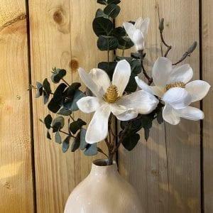 magnolia-white-stem-eucaylptus