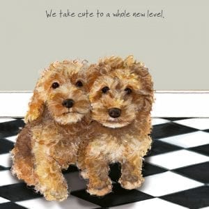 sqd115-the-little-dog-laughed-cockapoo-cute-puppies-greeting-card