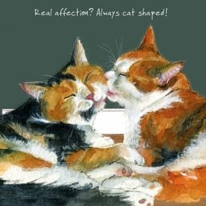sqd143-the-little-dog-laughed-cat-shaped-greeting-card