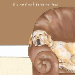 sqd19-the-little-dog-laughed-perfect-labrador-greeting-card