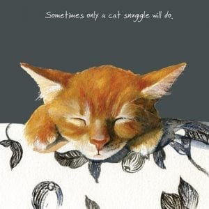 sqd89-the-little-dog-laughed-snuggle-ginger-kitten-cat-greeting-card