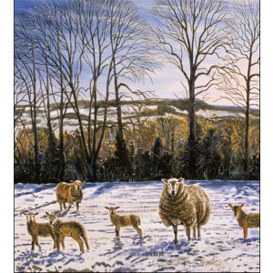 woodmansterne-christmas-cards-all-of-you-family-friends-sheep-festive
