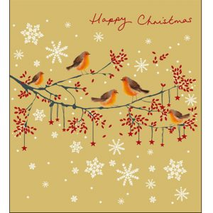 woodmansterne-christmas-cards-all-of-you-family-friends-robin-snowflake