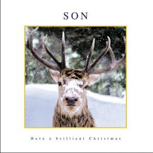 woodmansterne-christmas-cards-son-stag