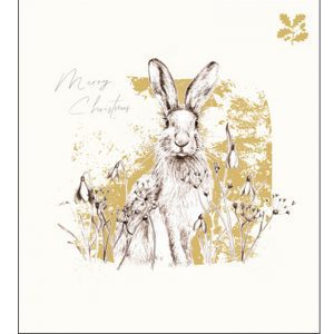 woodmansterne-christmas-cards-in-the-wild