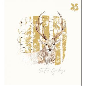 woodmansterne-christmas-cards-majestic